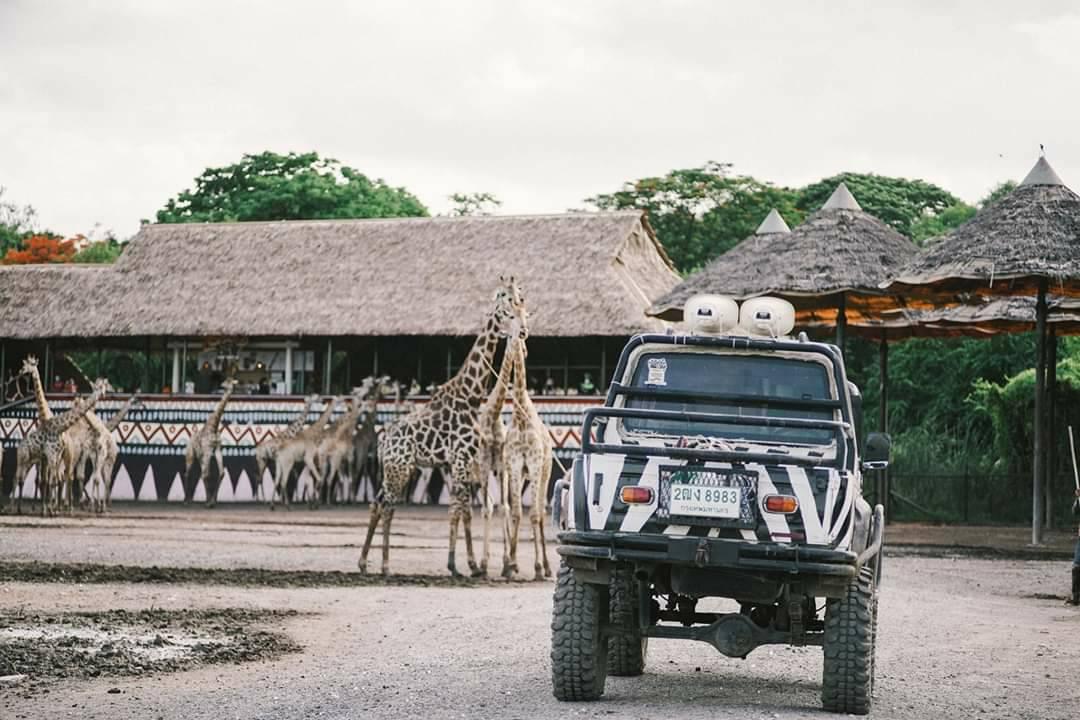 SafariWorld